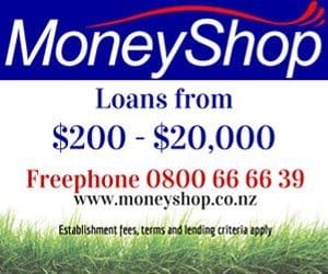 MoneyShop-web