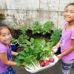 Amata ona Selesele Aiga Samoa ole Pacific Gardeners Club